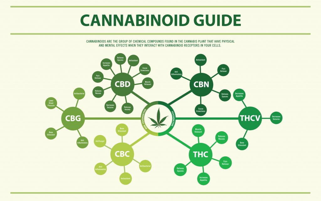 This image explains the possible benefits a few of the Cannabinoids found in the hemp plant may produce.